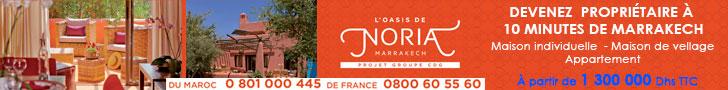 losise-noria-3
